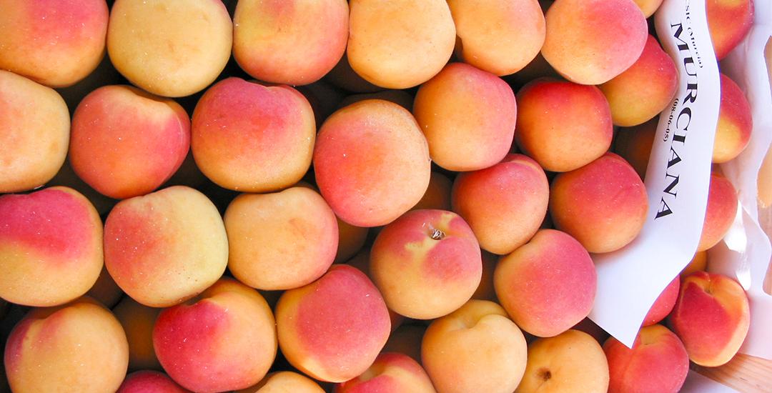 Fruta de Murciana