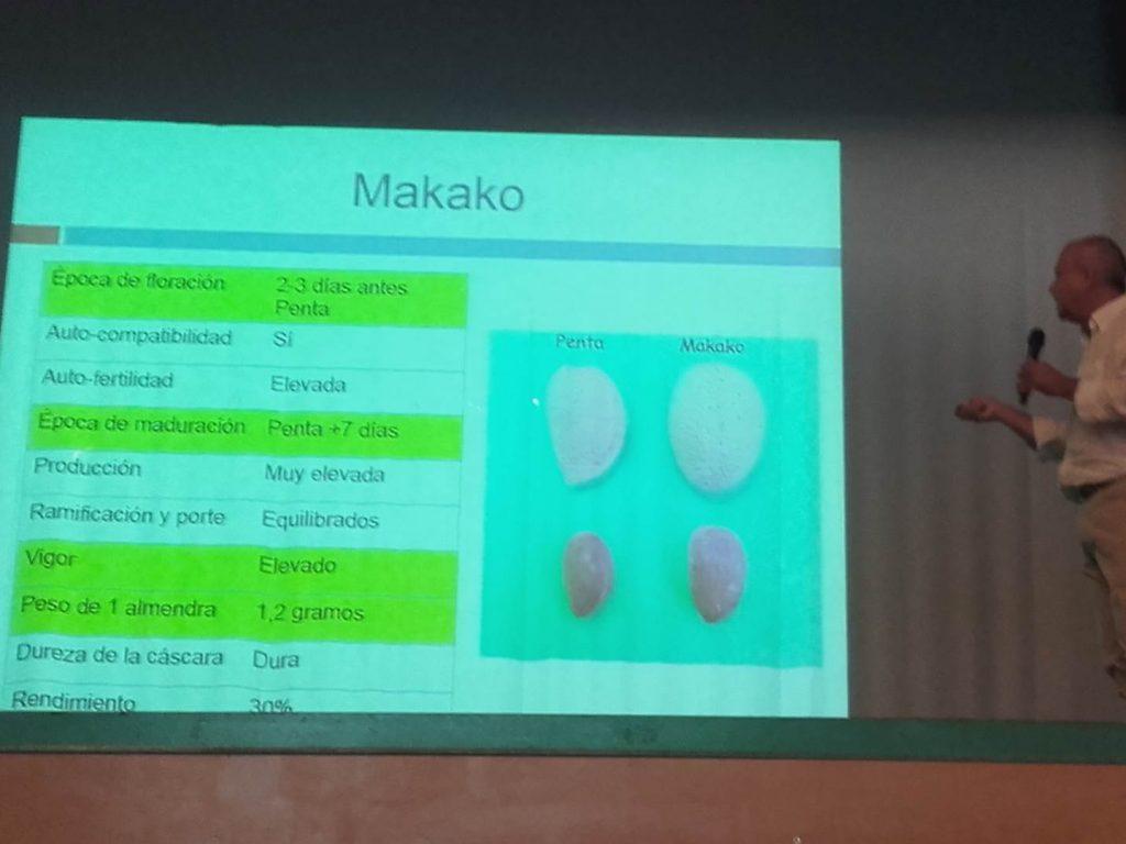 Federico Dicenta Makako Penta almond